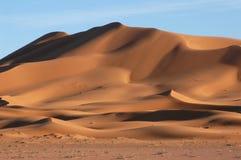 пустыня Сахара Стоковые Изображения