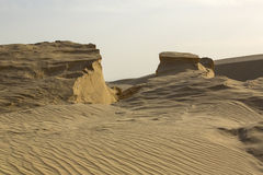 пустыня Сахара стоковые изображения rf