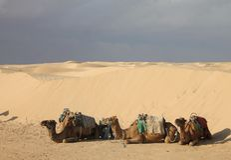 Пустыня Сахары Тунис, Ghlissia Kebili стоковое изображение