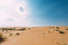 Пустыня с песчанными дюнами o ясный солнечный день стоковые фотографии rf