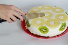 Пустыня торта Diplomatico Стоковое Изображение RF