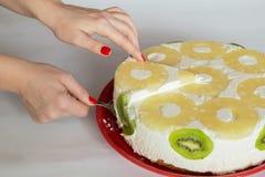 Пустыня торта Diplomatico Стоковые Изображения RF