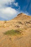 пустыня утесистая стоковое фото