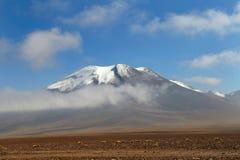 пустыня чилийки atacama стоковые изображения rf