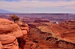 пустыня Юта каньонов Стоковые Фотографии RF