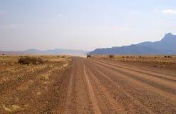 пустыня 4 Стоковая Фотография