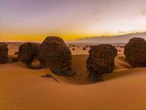 пустыня Стоковая Фотография
