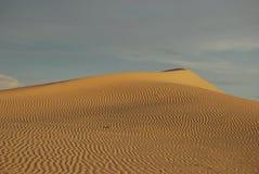 пустыня Стоковое Фото