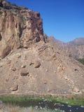 пустыня Стоковые Изображения