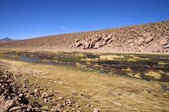 пустыня atacama Стоковая Фотография RF