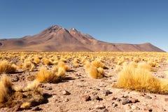 Пустыня Atacama Стоковое Фото