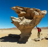 Пустыня Dali Стоковая Фотография