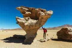 Пустыня Dali Стоковое фото RF