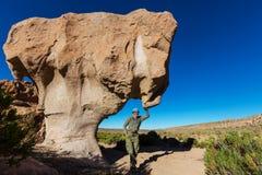 Пустыня Dali Стоковые Изображения