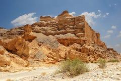 Пустыня Faran Стоковые Изображения RF