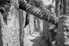 Пустыня figuig, Марокко стоковые изображения rf