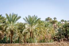 Пустыня figuig Стоковая Фотография