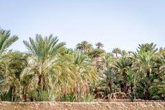 Пустыня figuig Стоковое фото RF