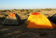 пустыня gobi лагеря Стоковое Изображение RF