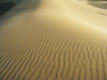 пустыня gobi Стоковое Фото