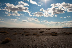 пустыня gobi Стоковые Изображения
