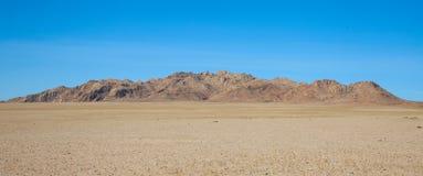 пустыня gobi Стоковые Фото