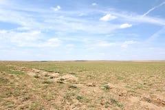 пустыня gobi Стоковое Изображение