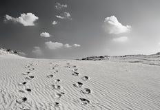 пустыня kharkov Стоковое Изображение