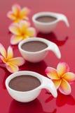 Пустыня mousse шоколада на красной предпосылке Стоковые Фото