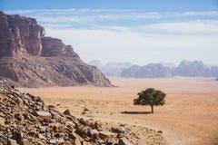 Пустыня Ram вадей Ландшафт Джордана Стоковая Фотография RF