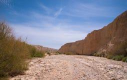 Пустыня Road стоковое фото rf