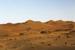 Пустыня Taklimakan одна из самых больших пустынь в мире Стоковые Изображения RF