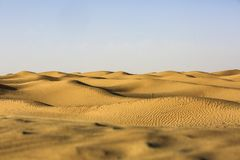 пустыня taklimakan Стоковое Фото