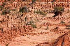 Пустыня Tatacoa на Колумбии Стоковые Изображения