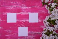 3 пустых белых листа на розовой деревянной поверхности Стоковое Изображение RF