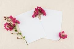 2 пустых белых карточки украшенной с розовыми цветками Стоковое Фото