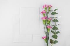 2 пустых белых карточки Стоковое Фото