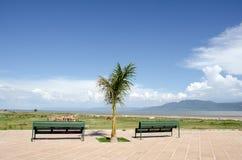 2 пустых скамейки в парке Стоковые Изображения