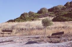 2 пустых стенда на ветреном холме Стоковые Изображения RF