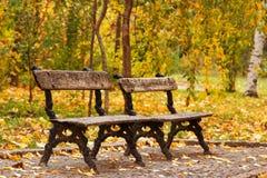 2 пустых стенда осени в парке Стоковое фото RF
