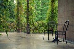 2 пустых стуль на overgrown патио Стоковые Фото