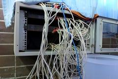 Путать кабеля Lan Стоковые Фото