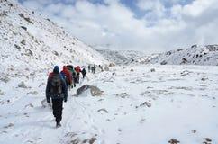 Путешественники идя к первому южному базовому лагерю Эвереста, Непалу стоковые изображения