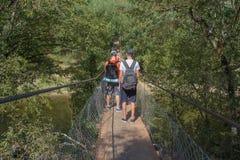 Путешественники путешествуют на висячем мосте идут trekking совместно Активные hikers Trekking совместно Туризм Eco и здоровое li Стоковые Фото