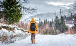 Путешественник в лесе зимы Стоковые Изображения RF
