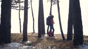 Путешественник в женщине леса при рюкзак в замедленном движении леса акции видеоматериалы