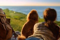 Путешественник женщины при собака сидя в багажнике автомобиля около моря, наблюдая захода солнца стоковое изображение rf