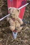 путешественник игрушки медведя Стоковые Фотографии RF