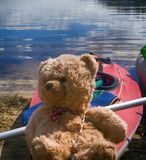 путешественник игрушки медведя Стоковое фото RF