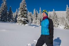 Путешественник наслаждаясь жизнью в горах зимы Стоковое Изображение